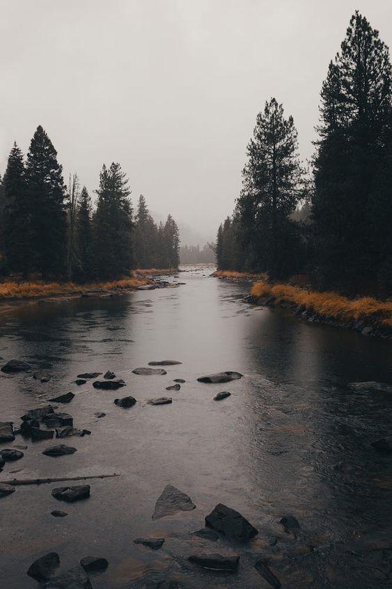 Overcast Misty River Landscape Photography Landscape Nature Photography