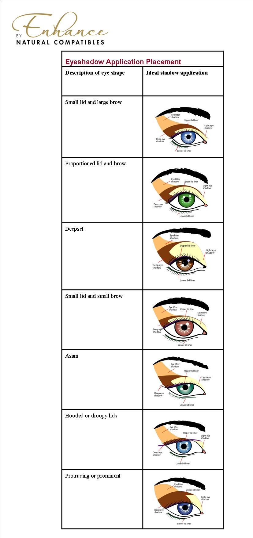 hight resolution of eye shape based diagram of eye shadow placement