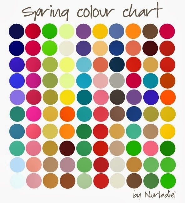 Hair Makeup Accessories Clothing What Color Season Are You True Spring Colors Warm Spring Colors Spring Color Palette