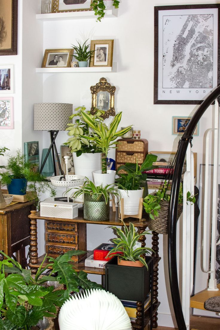 Wie setze ich meine Zimmerpflanzen toll in Szene? Plant Styling Inspirationen für deinen Urban Jungle! Bohemian Living mit Scandi und Vintage Midcentury Elementen. #urbanjungle #jungalow #plants #pflanzen #zimmerpflanzen #plantbox #indoorplants #interiortips #homedecor #boho #scandiboho #vintage #midcertury
