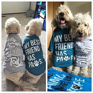 Oh goodness our friends dynamicdogduo are just TOO adorable in their human's new AH tees! #animalhearted #animalheartedapparel