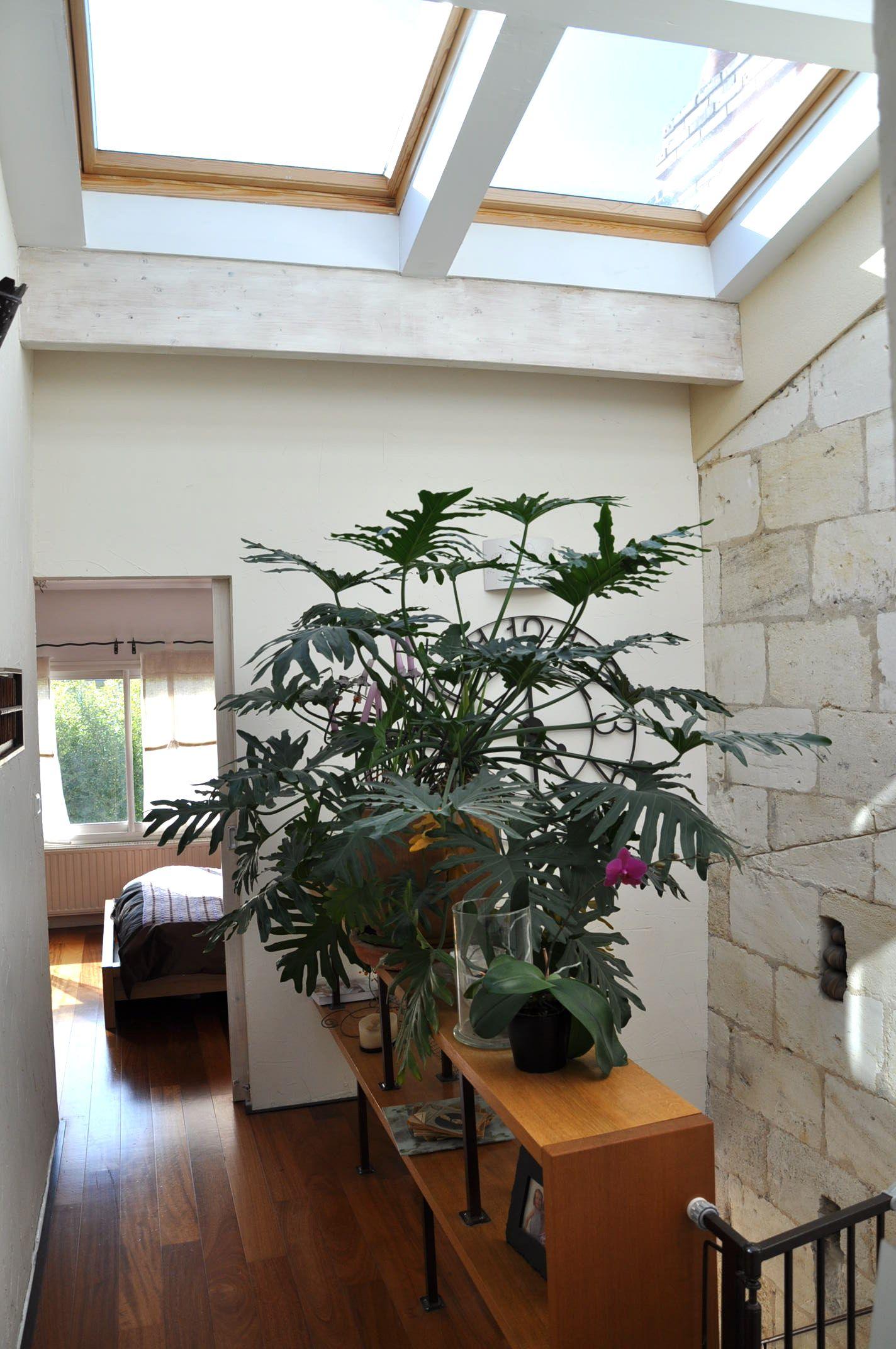 les 25 meilleures id es de la cat gorie echoppe bordeaux sur pinterest architecte bordeaux. Black Bedroom Furniture Sets. Home Design Ideas