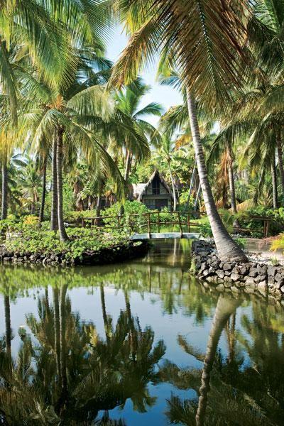 Big Island Hawaii.  Storybook fantasy.