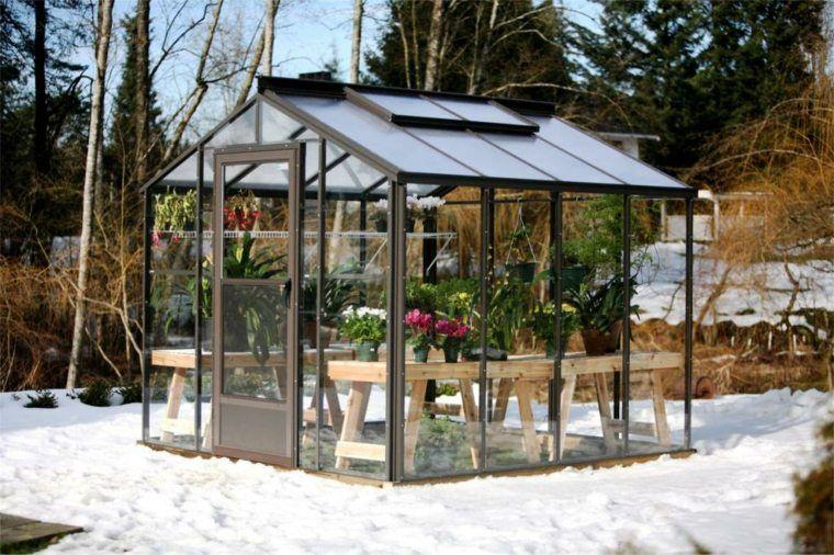Serre de jardin : la maison idéale pour vos plantes en hiver