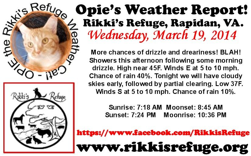 OPIE'S WEATHER REPORT! Rikki's Refuge, Rapidan, VA. WEDNESDAY, MARCH 19, 2014 More chances of drizzle and dreariness! BLAH! Showers this afternoon following some morning drizzle. High near 45F. Winds E at 5 to 10 mph. Chance of rain 40%. Tonight we will have cloudy skies early, followed by partial clearing. Low 37F. Winds S at 5 to 10 mph. Chance of rain 10%. Sunrise: 7:18 AM Moonset: 8:45 AM Sunset: 7:24 PM Moonrise: 10:36 PM   www.rikkisrefuge.org