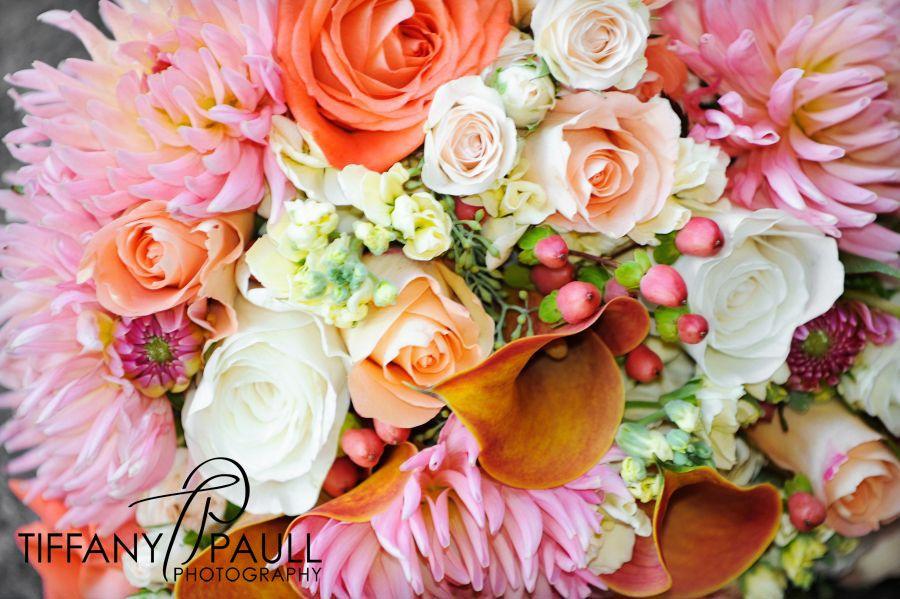 Tiffany Paull Photography » The Blog