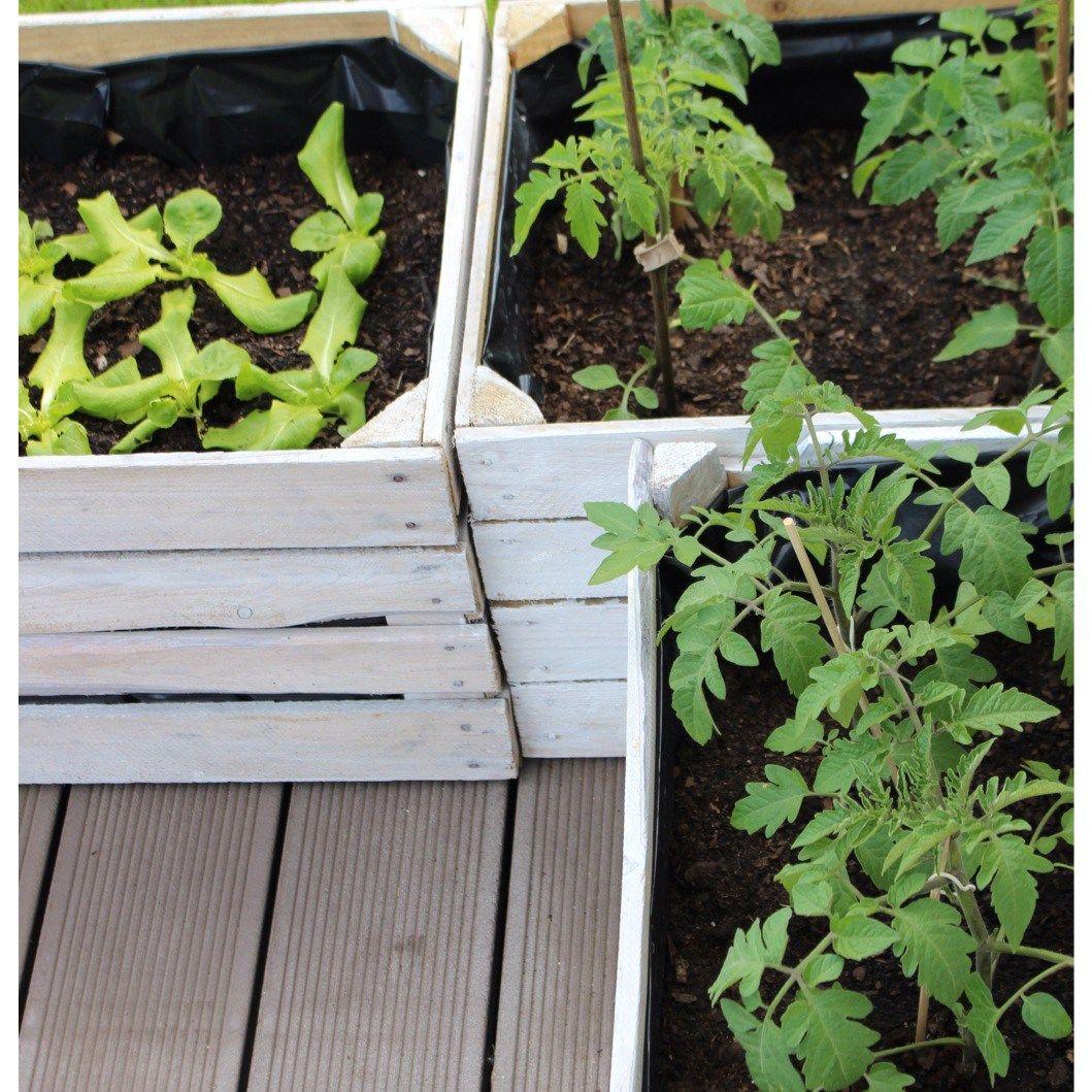 alte Obstkisten Hochbeet Gemüse im Garten für Kinder Gardening