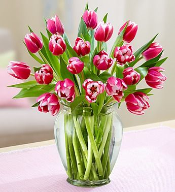 Perfectly Pink Tulips 20 Stems Free Vase Www Flowers Com