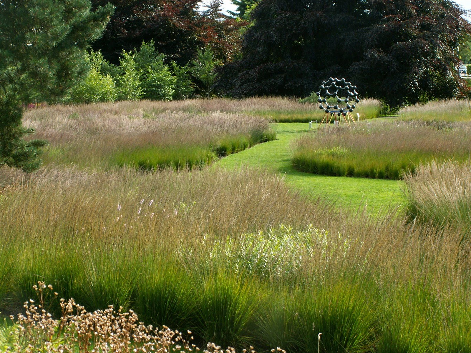 Piet oudolf trentham gardens rivers of grass cool for Gardening with grasses piet oudolf