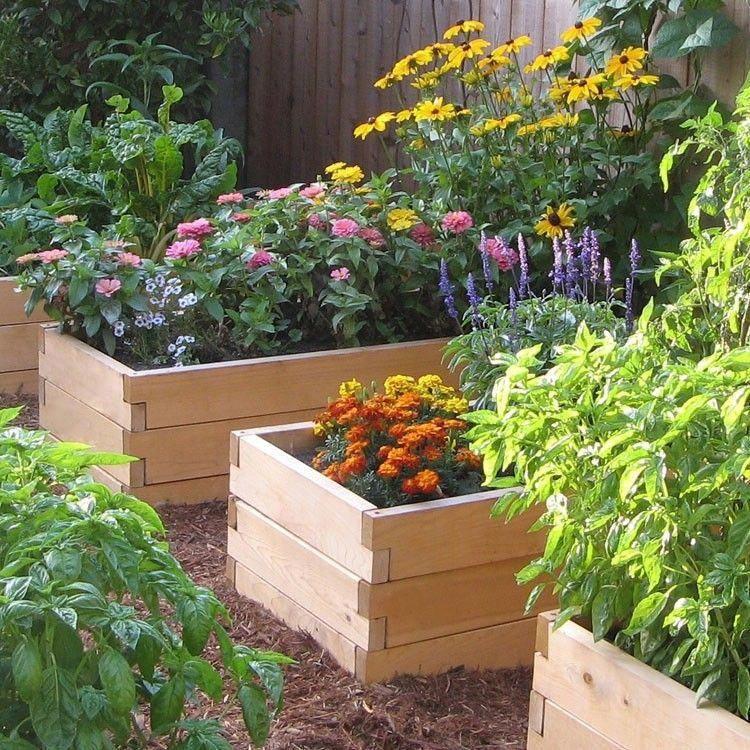 Backyard Ideas backyardhomesteading Diy raised garden
