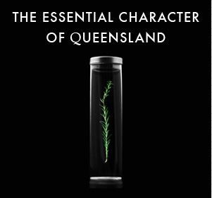The Essential Character of Queensland WHEN : 16th November - 15th December WHERE : State Library The Studio, level 1