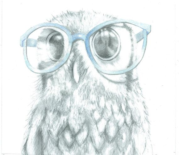 """Nosy Owl """"Stuart"""" Original Drawing, Pencil Drawing, Owl Decor, Animal Art,  Unusual Gift, Funny, Quirky, Geek Art, Hipster, Size10x11 on Etsy, $47.41"""