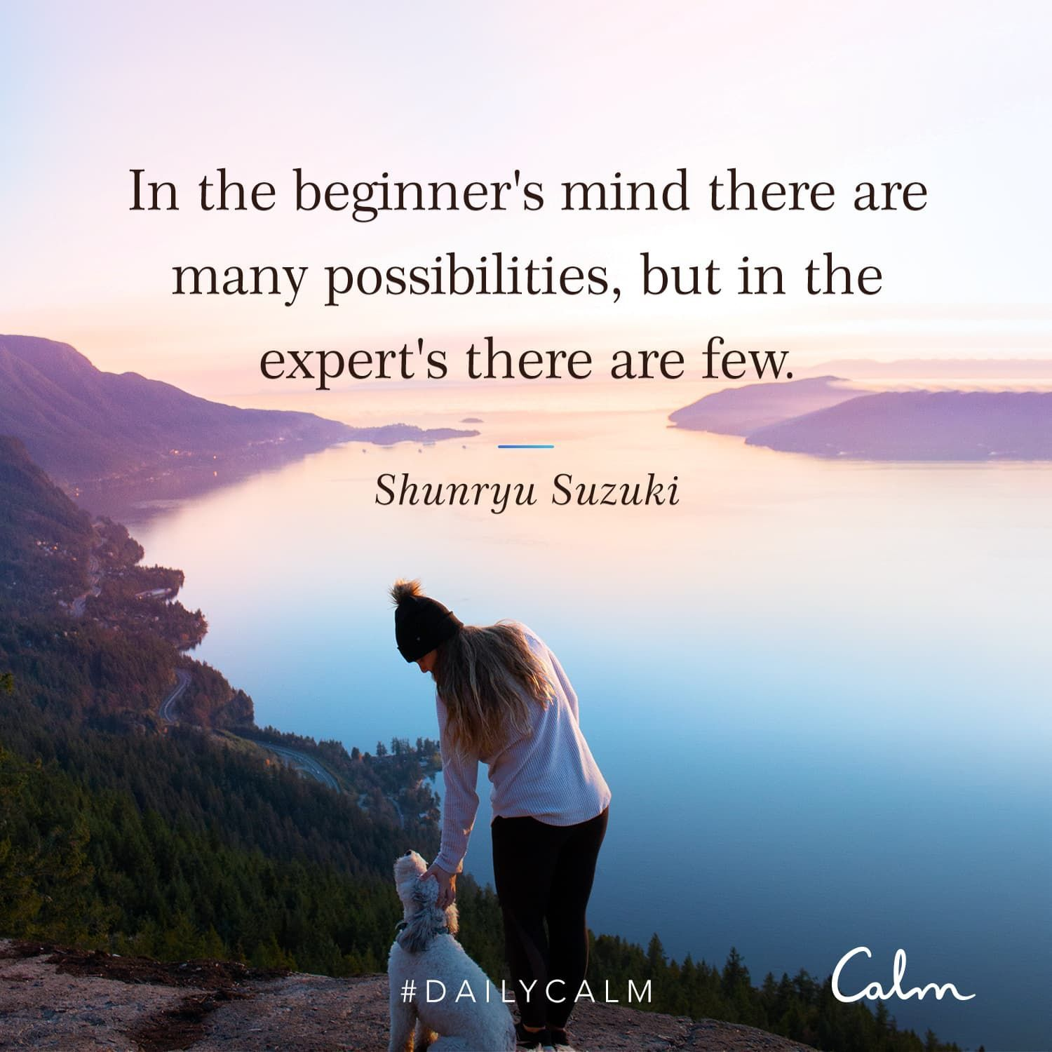 "Daily Calm Quotes ""In the beginner's mind there are many"