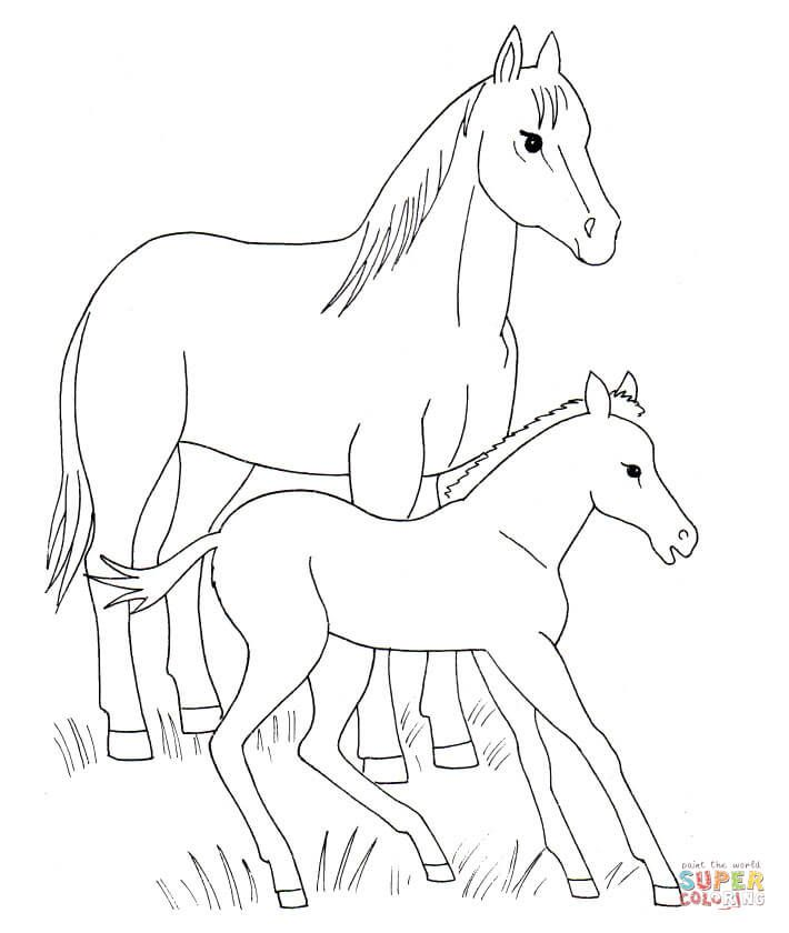 Horse And Foal Coloring Page From Horses Category Select From 27569 Printable Crafts Of Cartoons Nat Horse Coloring Horse Coloring Pages Horse Coloring Books