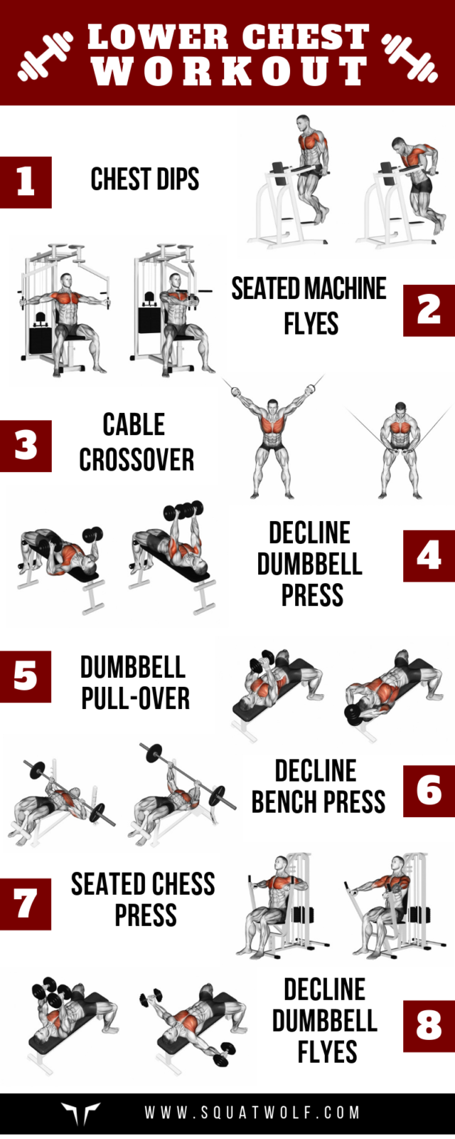 8 Lower Chest Workouts for Defined Pecs - SQUAT WOLF