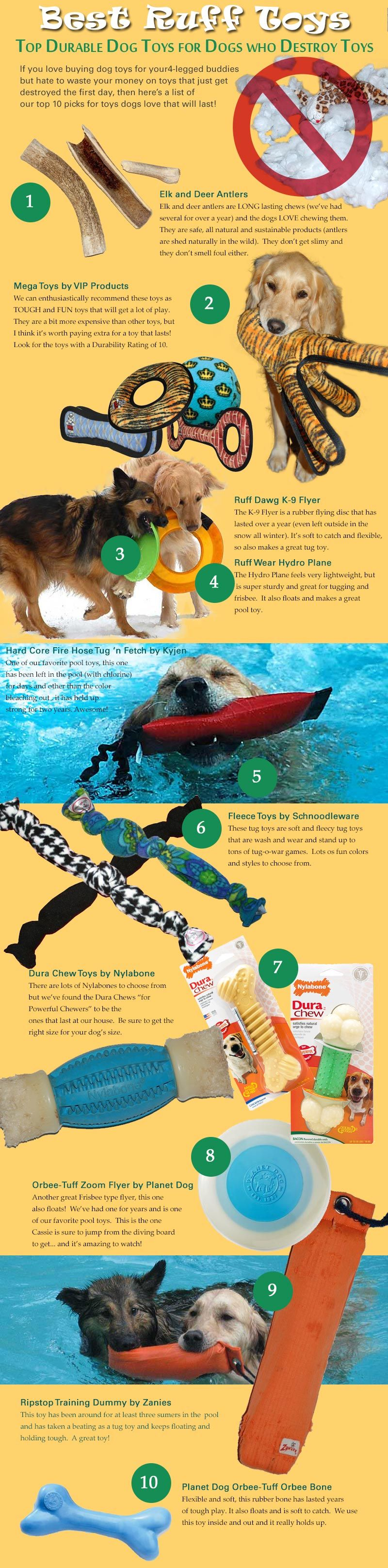 Top Ten Durable Dog Toys Infographic Ruff Toy Reviews We