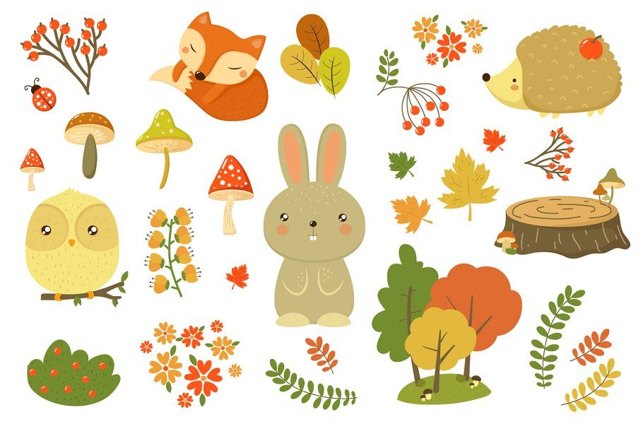 Can grow with soil ph levels of 4.2 to 6.5 Autumn Forest Plants And Animals Autumn Forest Forest Cartoon Cartoons Vector