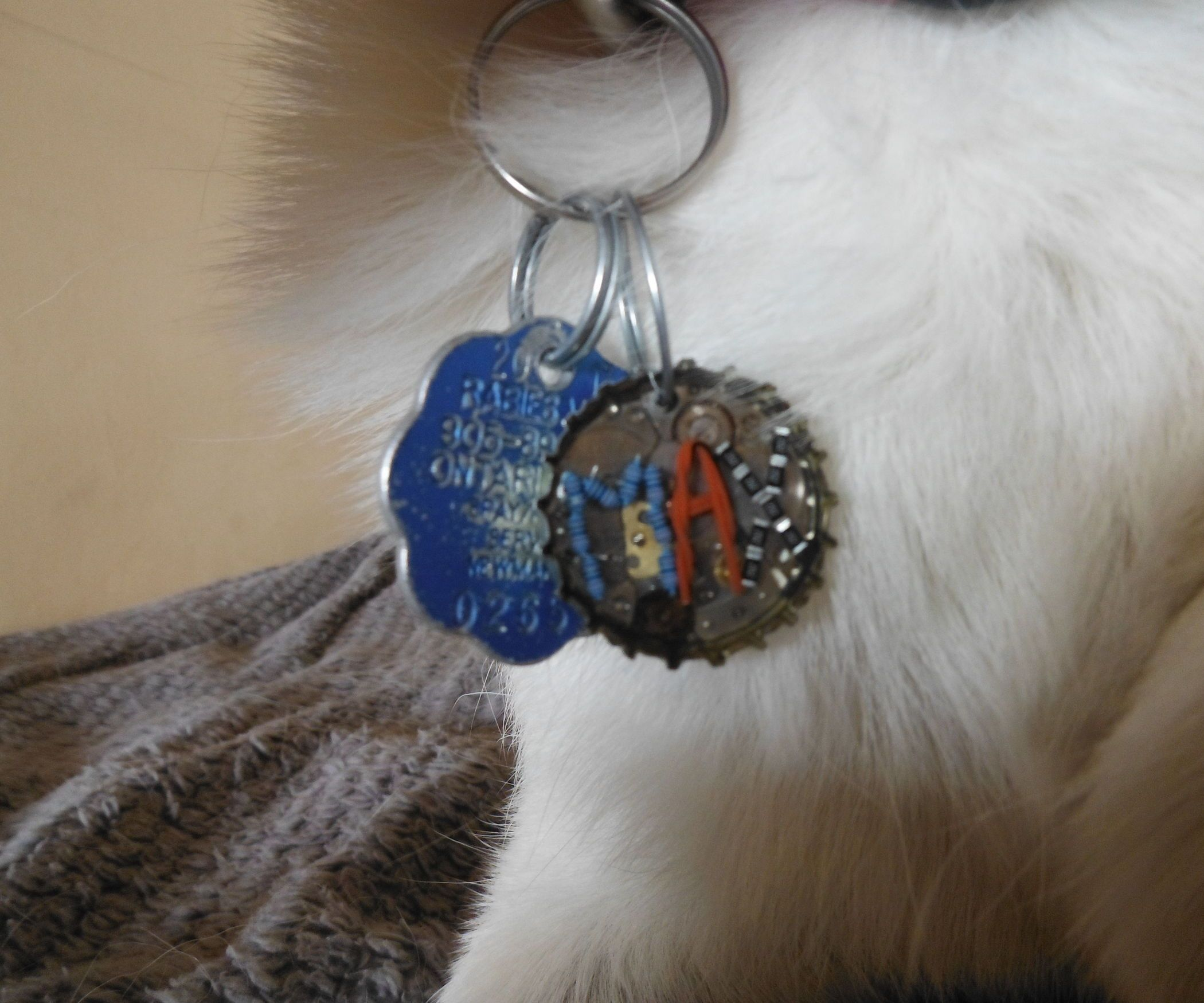 Dog Tag From Recycled Parts With Images Dog Tags