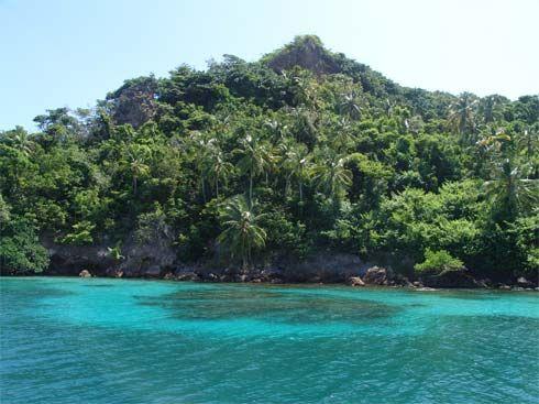 Selva Caribeña