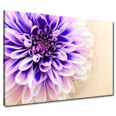 Large Floral Purple Lilac Canvas Wall Art Pinturas
