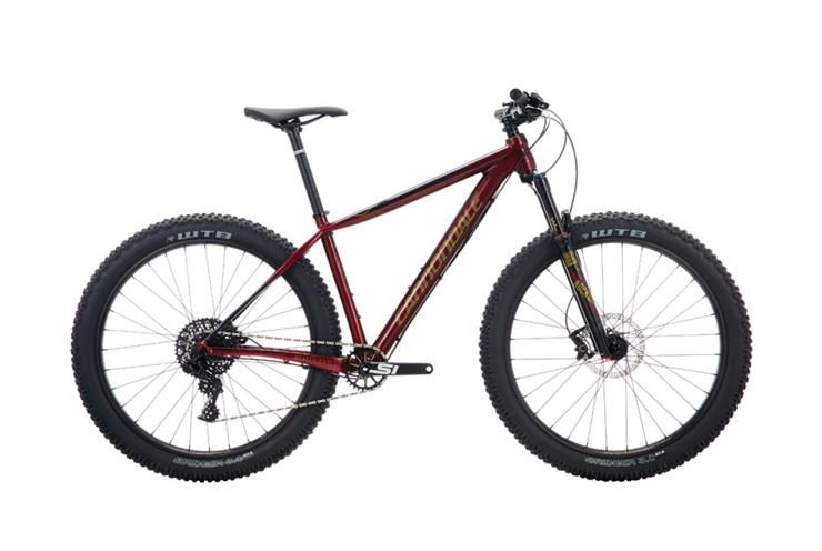 In The Market For A New Mountain Bike But Want To Save Money For
