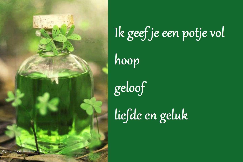 Citaten Succes : Klavertje vier good luck geluk en teksten