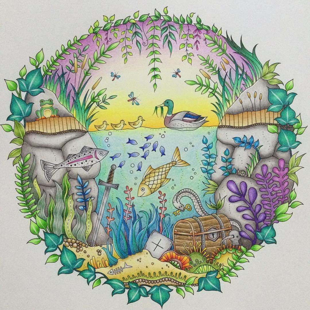 the duck pond book enchanted forest by johanna basford medium