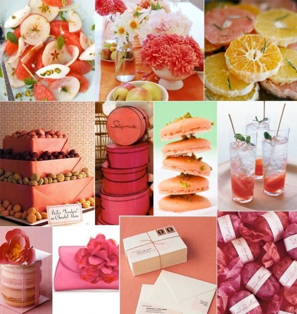 citrus shower grapefruit orange pink bridal grapefruit party theme