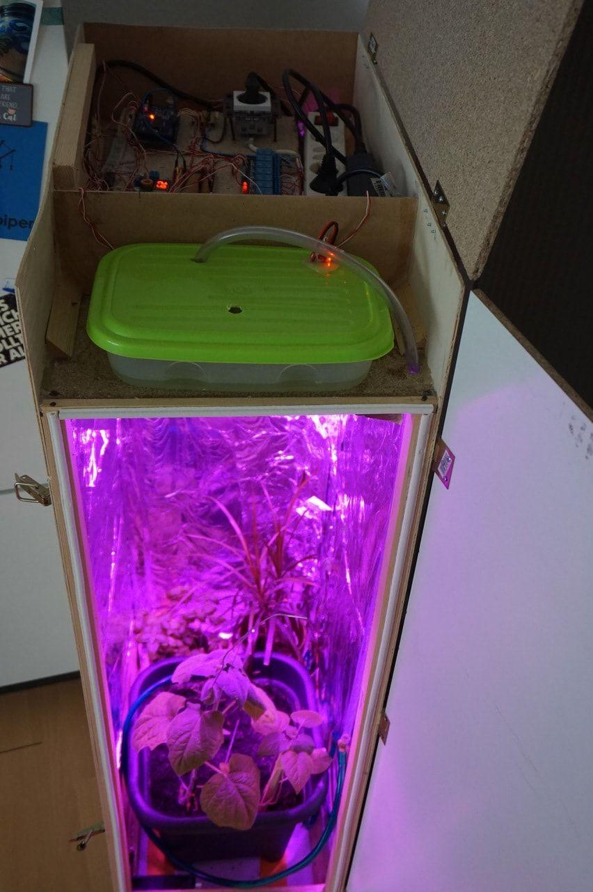 Die Vorbereitung Gewachshaus Growbox Eines Tages Kam Mir Die Idee Ein Vollautomatisches Gewachshaus Fur Das Eigene Woh Gewachshaus Gewachs Gewachshaus Bauen