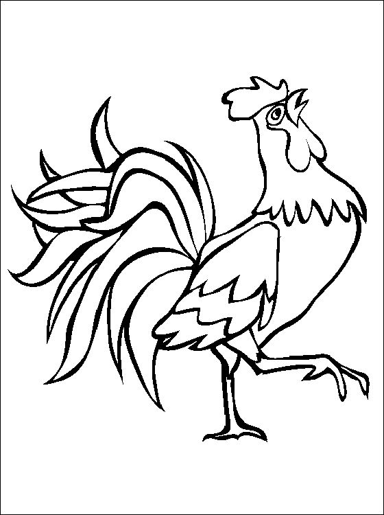 Free Rooster Pictures to Print | Printable animal coloring page of a ...
