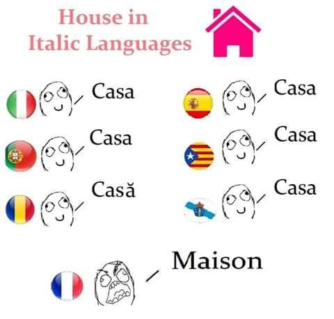 Pin By Rjrtranslations On Things In French History Memes Language Playing Cards