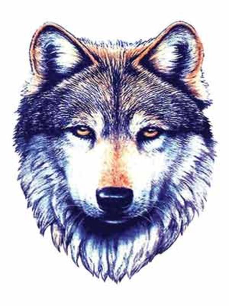 Png Wolf Face Wolf Tattoos Small Wolf Tattoo Tribal Wolf Tattoo