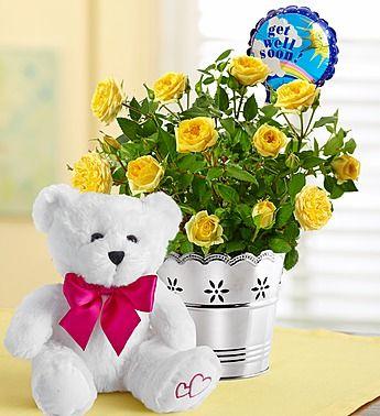 Get Well Bundle Get Well Soon Flowers Get Well Flowers Get Well Soon Gifts