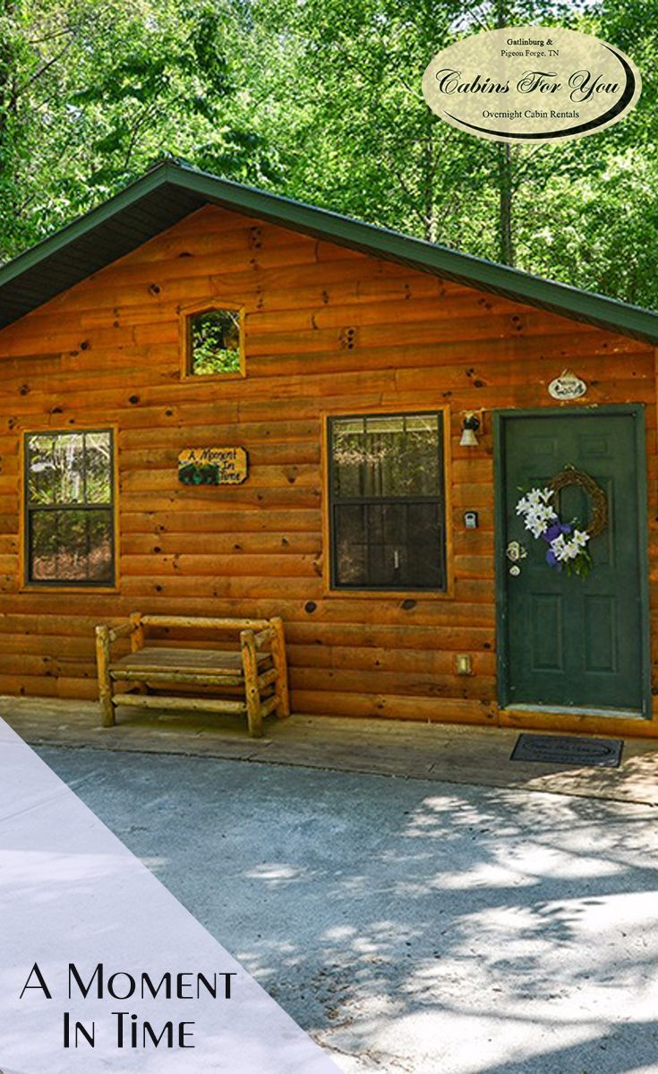 A beautiful one bedroom, two bathroom cabin in Pigeon