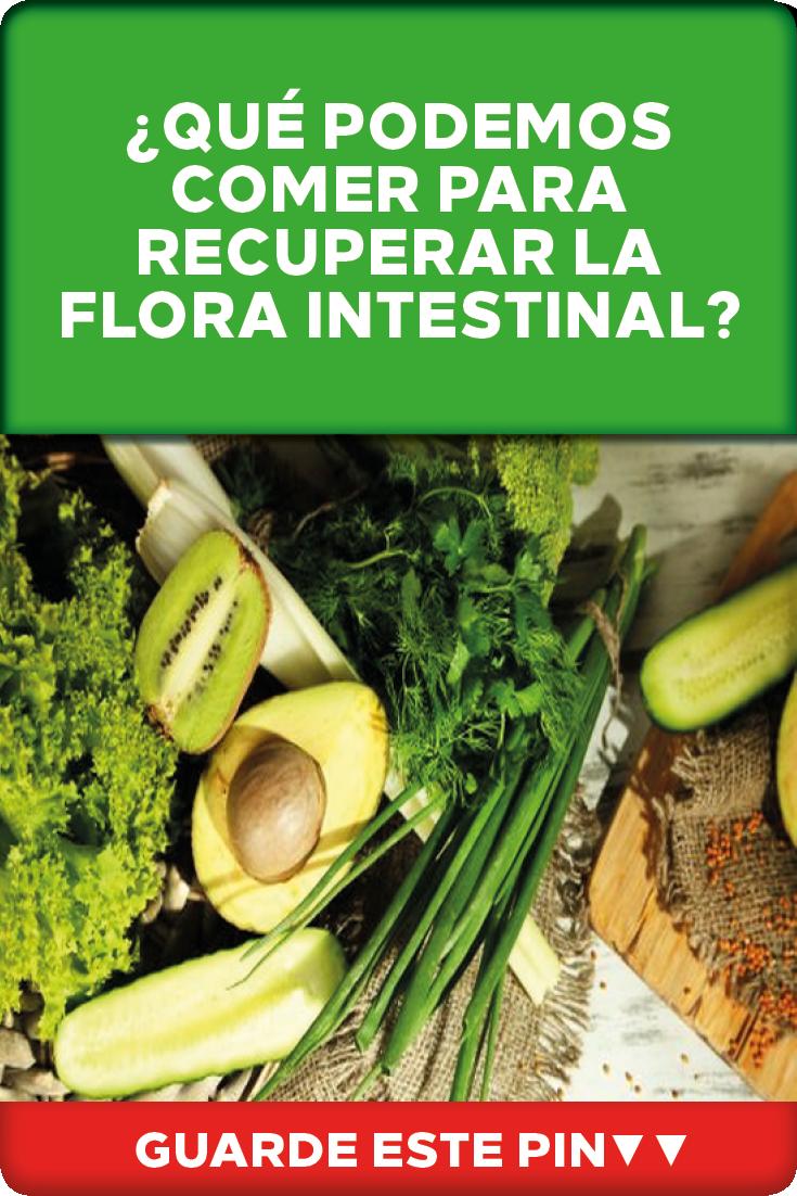 Qué Podemos Comer Para Recuperar La Flora Intestinal Guía Básica De Alimentación Para Recuperar La Flora Intestinal Consumir Flora Intestinal Caseros Flora