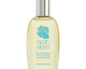 Elizabeth Arden Blue Grass Eau de Parfum Spray 100ml RRP £34.00 | Our Price £10.25 – Saving £23.75 (70%) http://tidd.ly/b74cde2