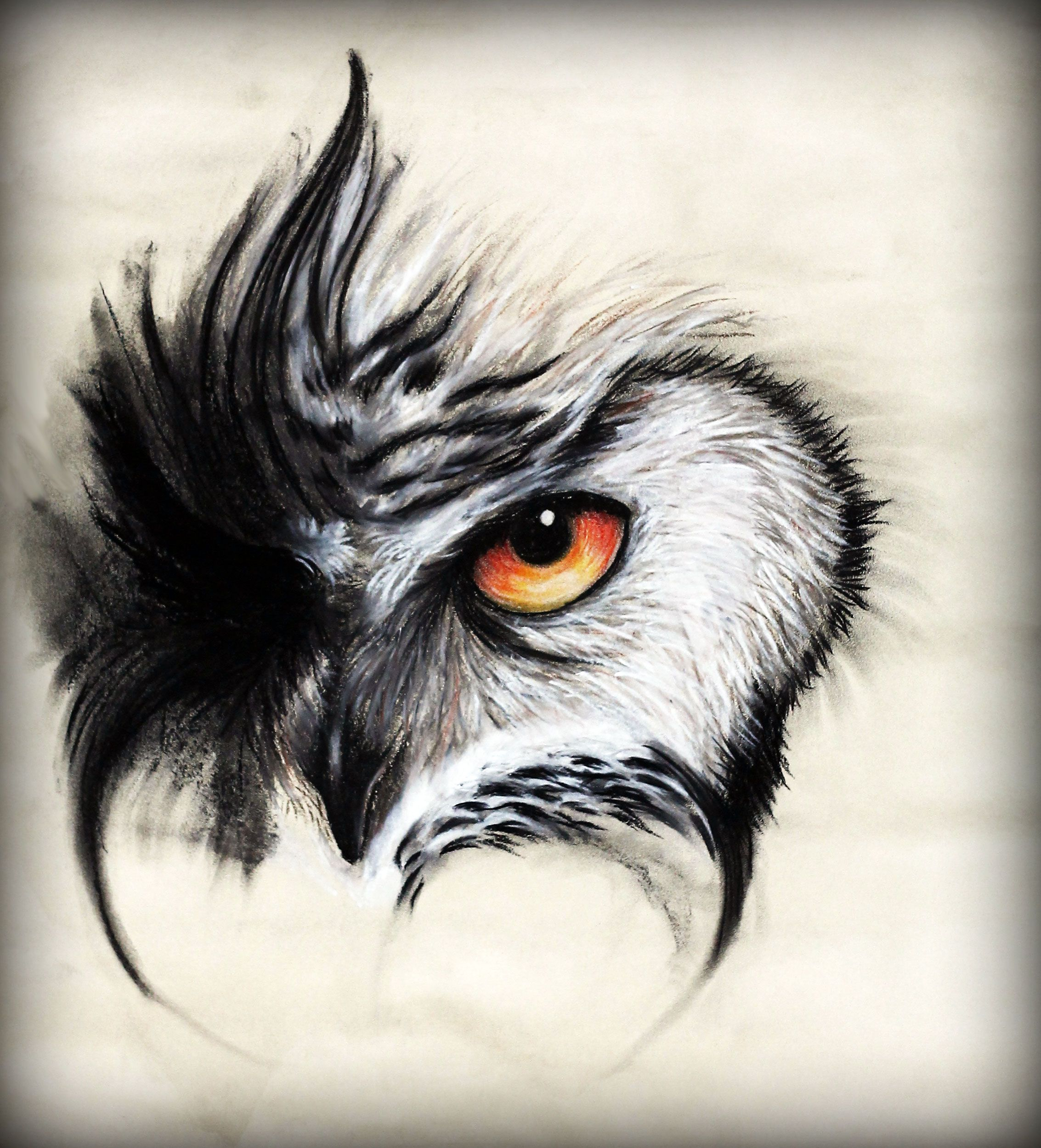 Facebook Https Www Facebook Com Nicolasgabrielart Ref Hl Owl Tattoo Owl Eyes Owl Tattoo Design