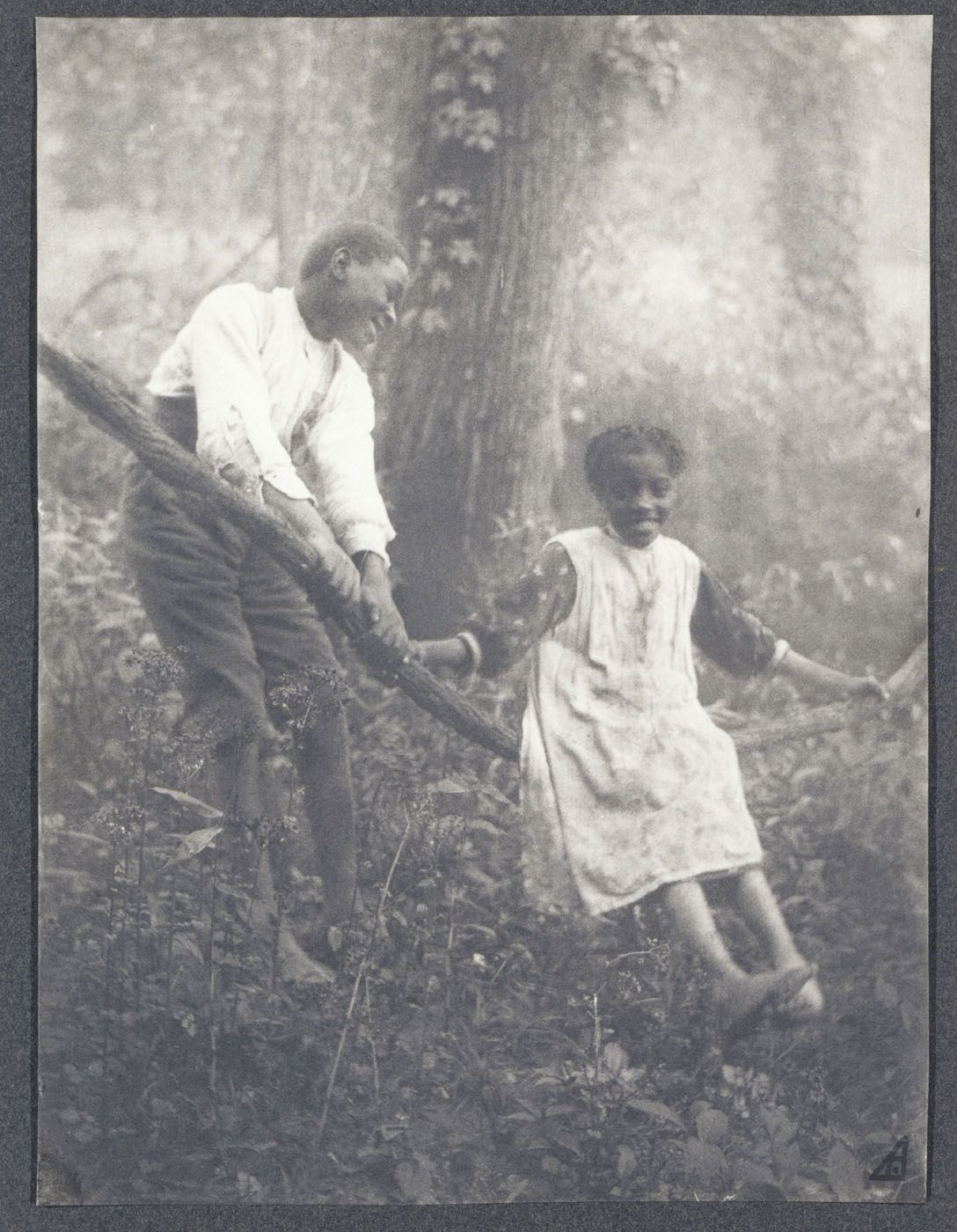 The Grape-Vine Swing ca. 1895 Photographer, location unidentified Smithsonian American Art Museum