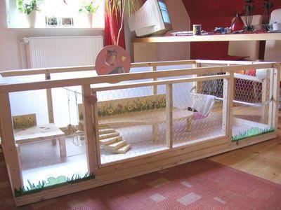 Schwedisch tiere degus hasen u v m pinterest meerschweinchen kaninchen und - Schlafzimmerschrank selber bauen ...