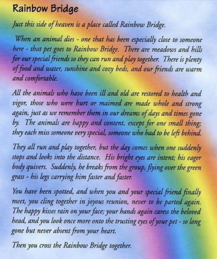 The Rainbow Bridge In Memory Of Brother Man Hayes Swindoll Who