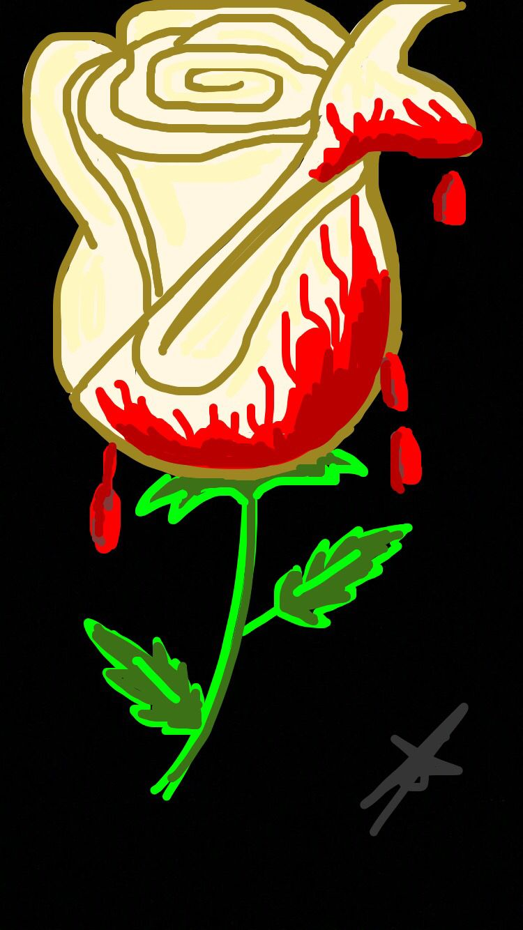 White rose Snapchat drawing, Instagram and snapchat, Art