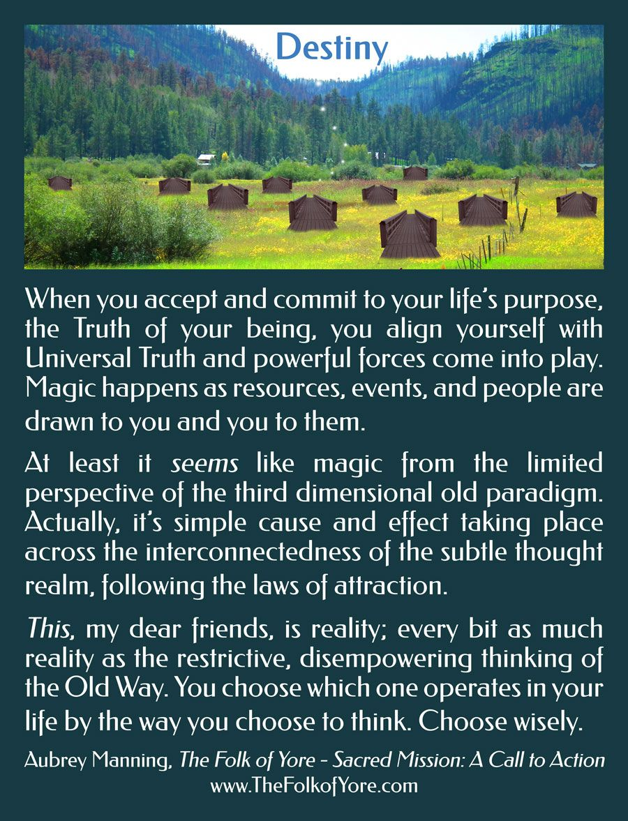 When You Accept And Commit To Your Life S Purpose Magic Happens