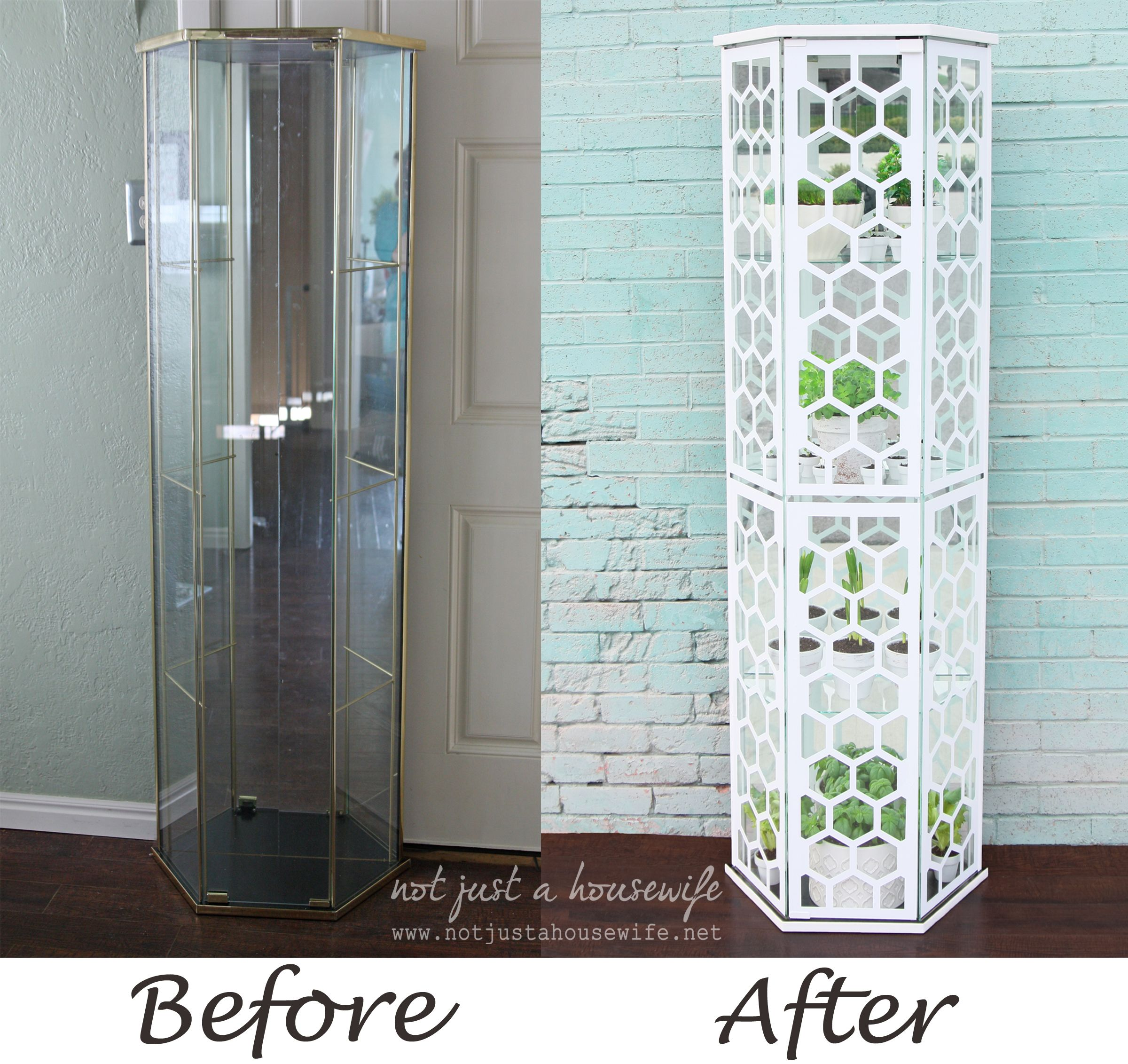 diy greenhouse from a glass curio cabinetnot just a housewife