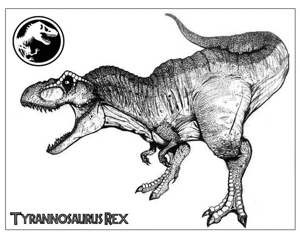 T Rex Da Colorare Pagine T Rex Dinosauro Da Colorare