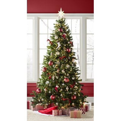 Beachcrest Home Green Spruce Artificial Christmas Tree with Clear