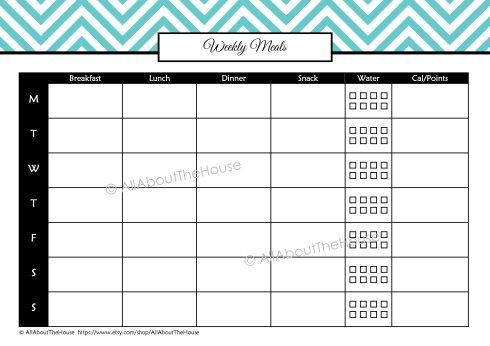 Health And Fitness Kit   Sheets Including A Personalised Binder