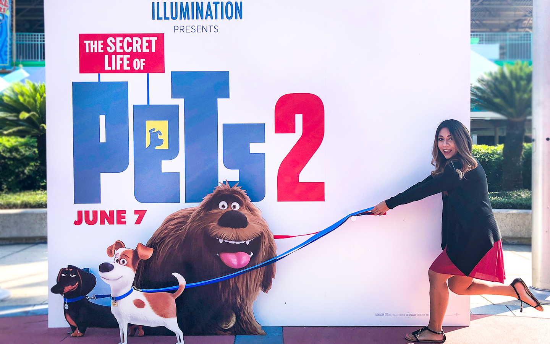 Family Movie Night Fun Ideas For The Secret Life Of Pets 2 Family Movies Family Movie Night Pets Movie