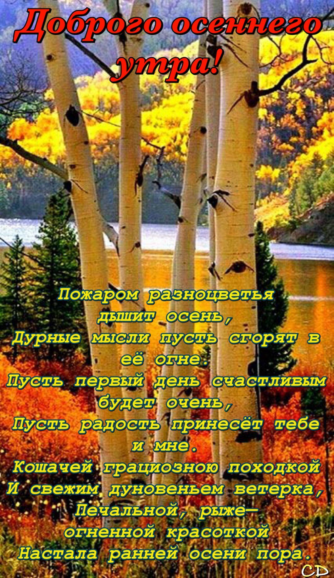 Pin Ot Polzovatelya Ninulya F Na Doske Osen Dobroe Utro