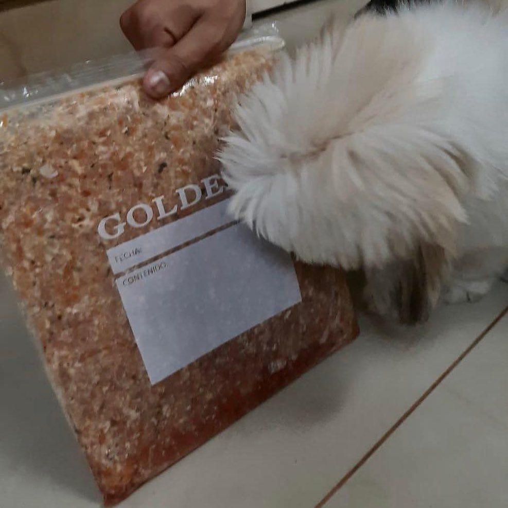 Dobby Esta Feliz Xq Llego Su Comida Tu Tb Puedes Hacer Feliz A Tu Mascota Con La Dieta Barf Petbarf Barfdiet Dogfood Catfood