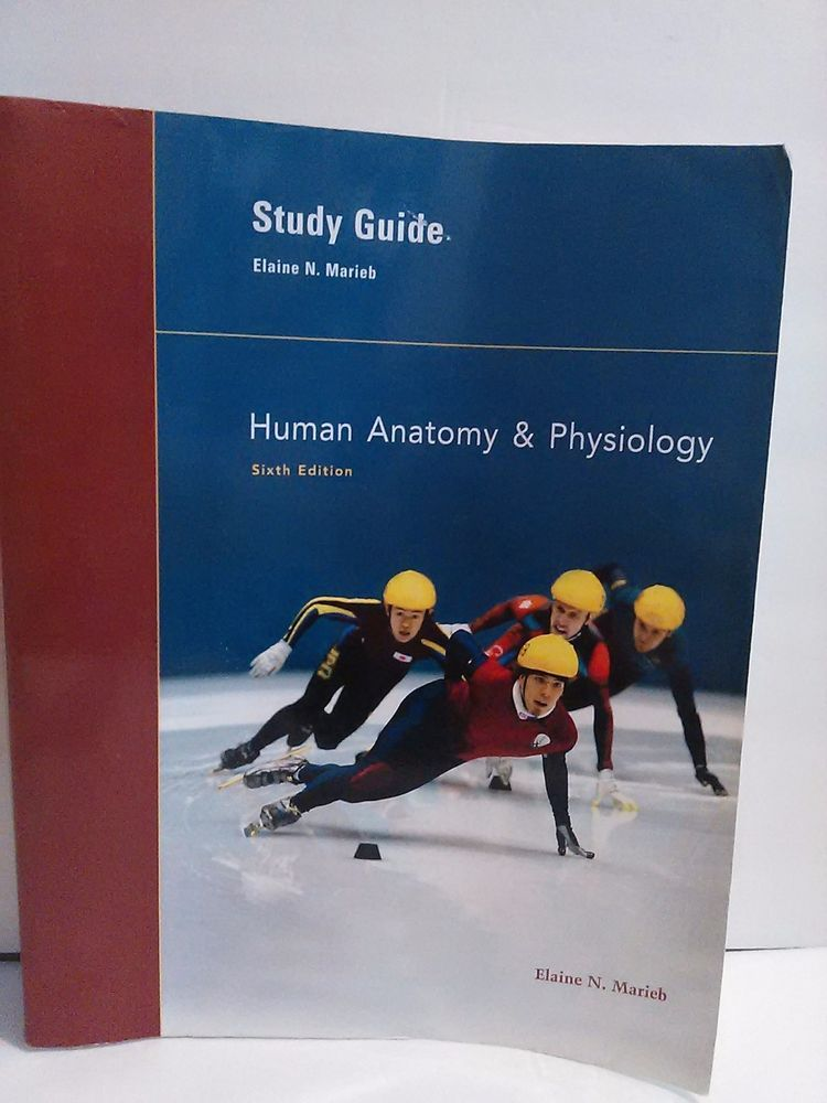 Human Anatomy Physiology Study Guide Only Elaine Marieb 6th